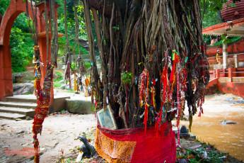 Basistha Temple - Guwahati