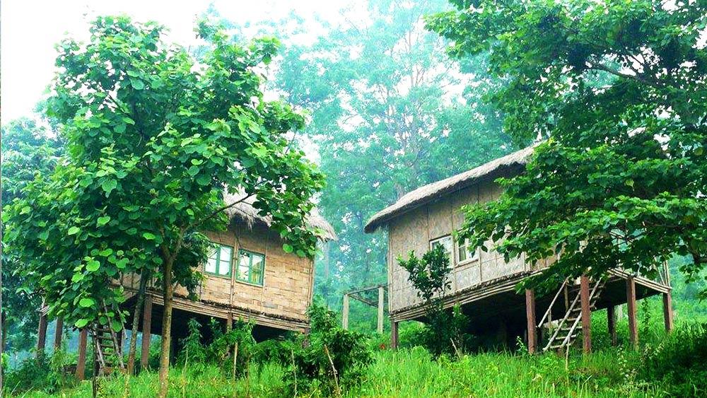 Brahmaputra Jungle Resort Guwahati