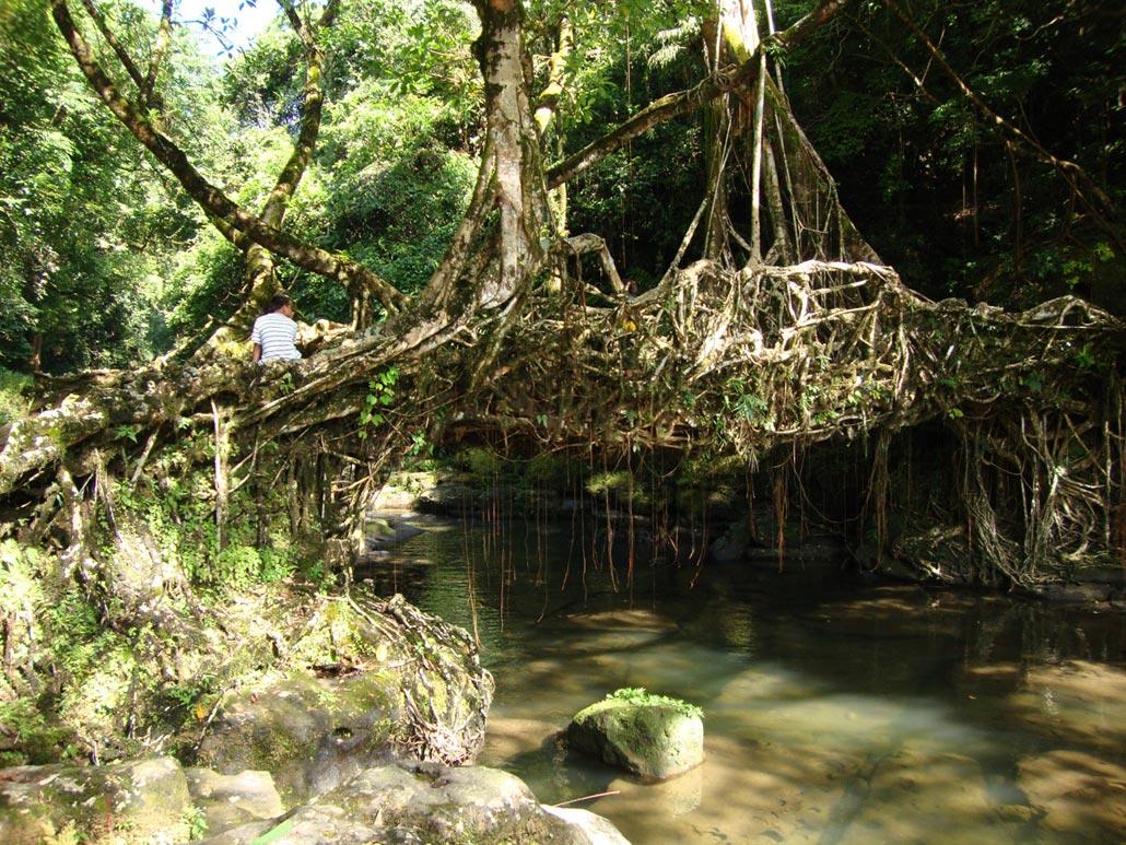 Mawlynlong--Meghalaya